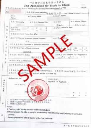 The China visa application form